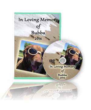 Slideshows for Pet Memorials